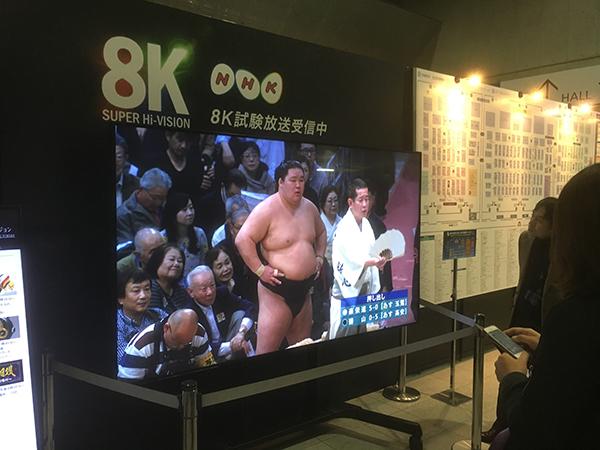 8k_sumo_2