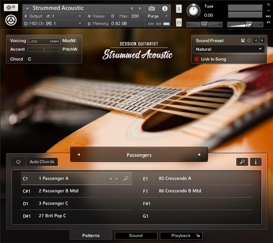 NI Strummed Acoustic